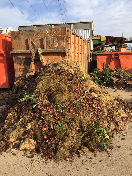 E15 building junk removal Stratford