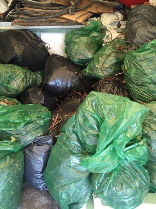 domestic scrap collection